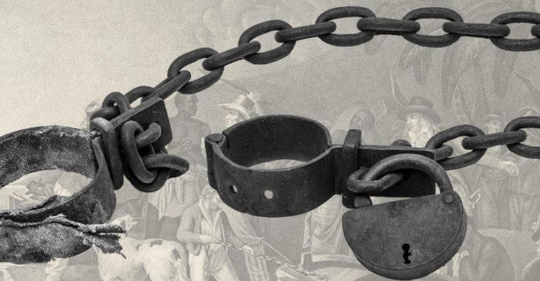 Illustration de l'article ÉVÉNEMENT – Les journées de La Brède