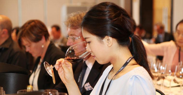 Illustration de l'article Vins de Bordeaux, péril en le demeure