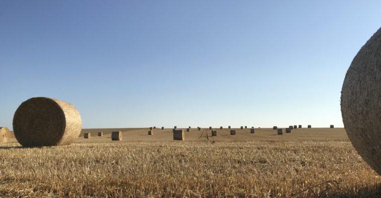 Illustration de l'article Les marchés fonciers ruraux au plus haut