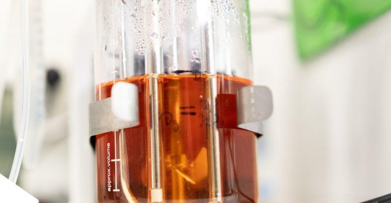 Illustration de l'article Thérapies cellulaires : 1ère mondiale pour Treefrog Therapeutics