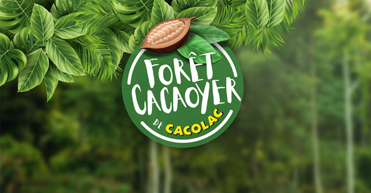 Cacolac forêt cacaoyer