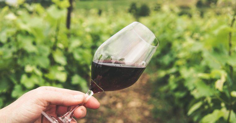 Illustration de l'article [ Vin de Bordeaux ] Cos d'Estournel dévoile un flacon d'exception