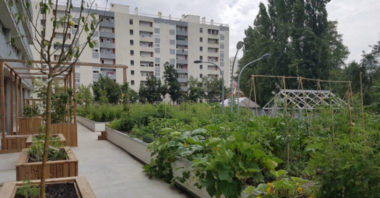 Locus Solus ferme urbaine (© Trouillot Hermel Paysagistes Aquitanis)